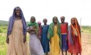 Women working in a field in Doroti Village, Chad. Photo: Lucy Bloxham / Concern Worldwide.