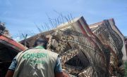 Man wearing jacket with Concern logo observes fallen building in Haiti