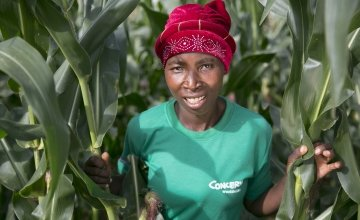 Esime Jenaia, a Lead Farmer for conservation Agriculture, at her plot in Chituke village, Mangochi, Malawi. Concern has been carrying out Conservation Agriculture programming in Malawi since 2012, with the assistance of Accenture Ireland. Photo: Kieran McConville / Concern Worldwide.