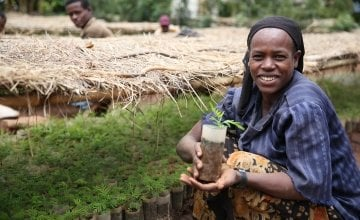 Shuble Baza, who works at a Concern-supported nursery in Ethiopia.