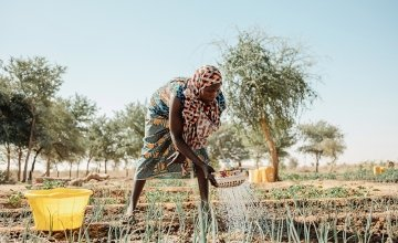Woman gardening in community garden in Niger.