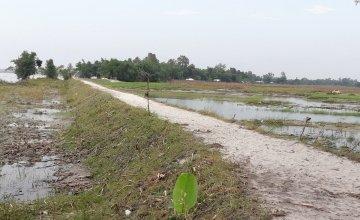 a 750 feet repaired embankment/road, Dhubni, Hatibandha.