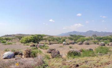 Concern Worldwide is helping communities in Kenya respond to a devastating drought.