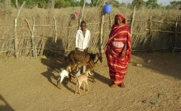 Muna Abu Jabar with her son Ahmed with their goats in Sudan.