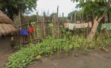 A family compound in Pugnido Camp 1, Gambella, Ethiopia. Photo: Jennifer Nolan / Concern Worldwide