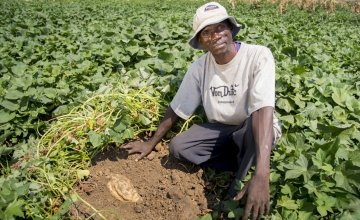 Davidson John, in the communal plot of orange-fleshed sweet potato being grown by his farmer group in Malawi. Photo taken by Kieran McConville / Concern Worldwide.