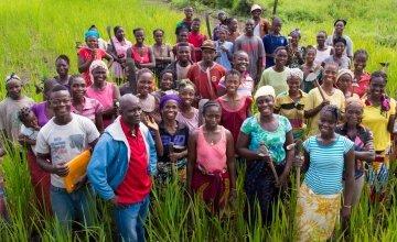 Concern staff and members of a farmer field school in Lofa County, Liberia. Photograph taken by Kieran McConville / Concern Worldwide.