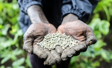 Nyayany Boh holds a handful of seeds. She is part of the Concern Worldwide supplementary feeding programme in Gambella, Ethiopia. Photo: Jennifer Nolan