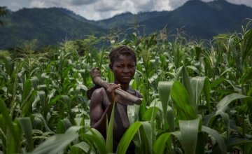 Alyne Mpunga stands in her field of maize in Malawi, the results of her work on Concern's conservation agriculture project