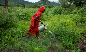 Women make up two thirds of the global agricultural workforce