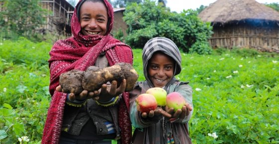 In Ethiopia, we're helping families like Mehamed's to diversify their crops for better livelihood outcomes. Photo: Jennifer Nolan/ Concern Worldwide.