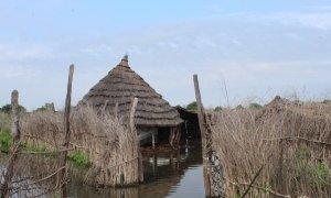 Flooding in Sitteb Village, Sudan Photo by Ibrahim Adam Osman / Concern Worldwide