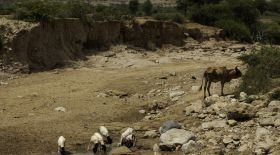 A dried up river bed near Carracad.