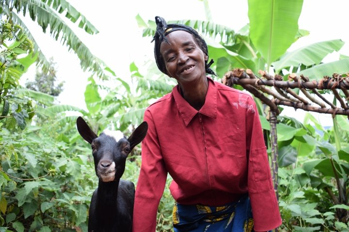 Widow Isabelle Mundana (66) with her goat Martin. She has benefited from five goats as part of Concern's community and household resilience programme, Burundi 2017. Photo: Darren Vaughan / Concern Worldwide