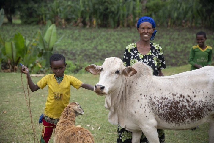 As part of a Concern programme in Ethiopia, Mestawat Sorsa has started her own grain milling business and acquired a donkey, a cow, and a sheep. Photo: Kieran McConville/Concern Worldwide.