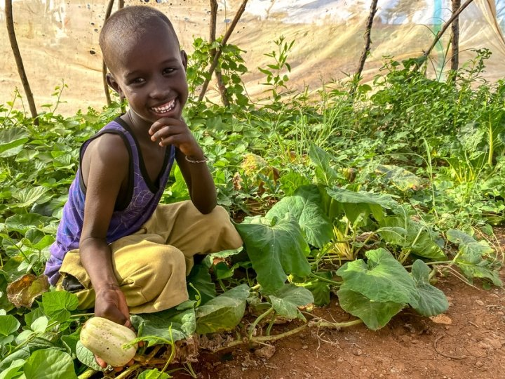 Abudho (6) admires his mother's plot of healthy butternut squash at home in Northern Kenya. Photo: Jennifer Nolan / Concern Worldwide