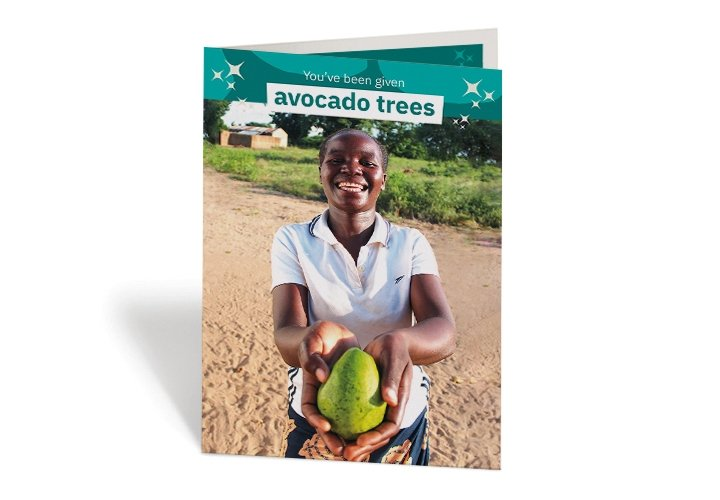 2020 GIFTS - AVOCADO