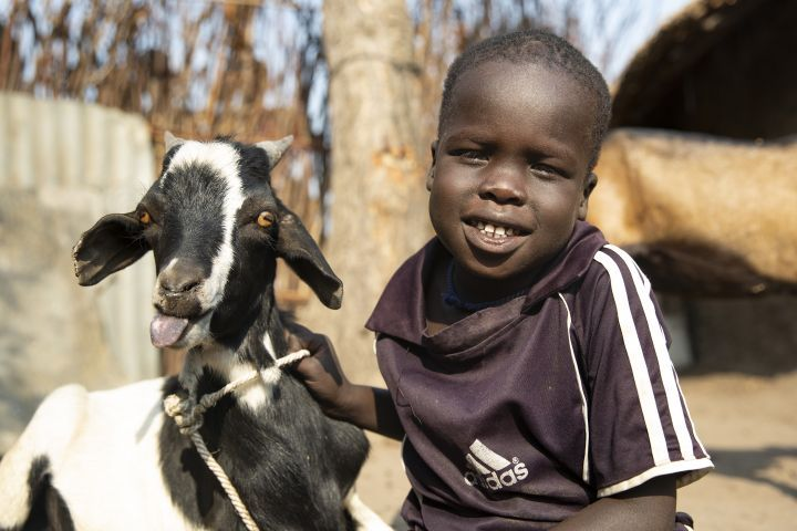Chiny, 4, is all smiles thanks to his goat Simone, in Gambella, Ethiopia. Photo: Kieran McConville / Concern Worldwide