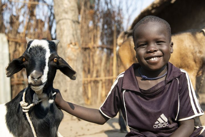 Nyabiel Nyang's son Chiny (pictured) with the family's goats in Ethiopia