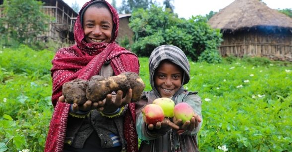 Mehamed's family grow potatoes, as well as apples. Photo: Jennifer Nolan / Concern Worldwide.
