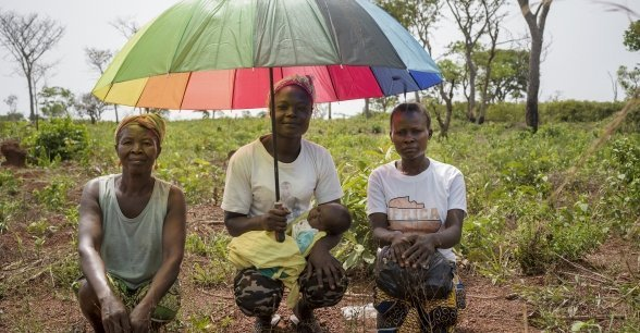Members of the Concern-supported seed multiplication group at Paybos - Caroline Yali (who's Olivier's wife), Emmanuella Mobutou and Gertrude Yassibio. Emmanuella is holding Gertrude's baby son Christopher. The women have been cultivating crops in the field they share.