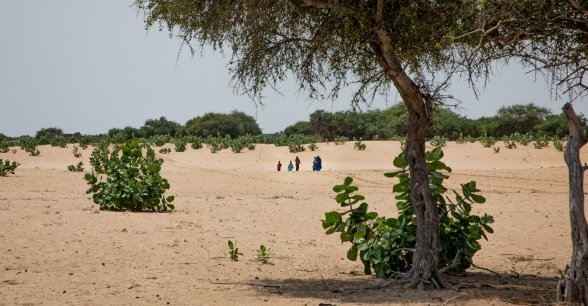 The baron landscape of the Lake Chad region. Families must walk in the intense heat for hours to seek medical attention and clean water.