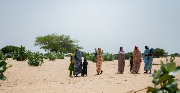 Local community members crossing the baron landscape of the Lake Chad region.