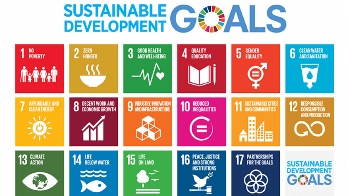 The Sustainable Development Goals. Photo: Concern Worldwide.