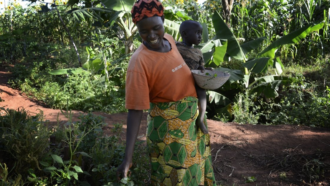Esperence Mutetiwabo and her two-year-old daughter Delphine collect amaranth leaves in Burundi. Photo: Chris de Bode/Panos Pictures for Concern Worldwide.