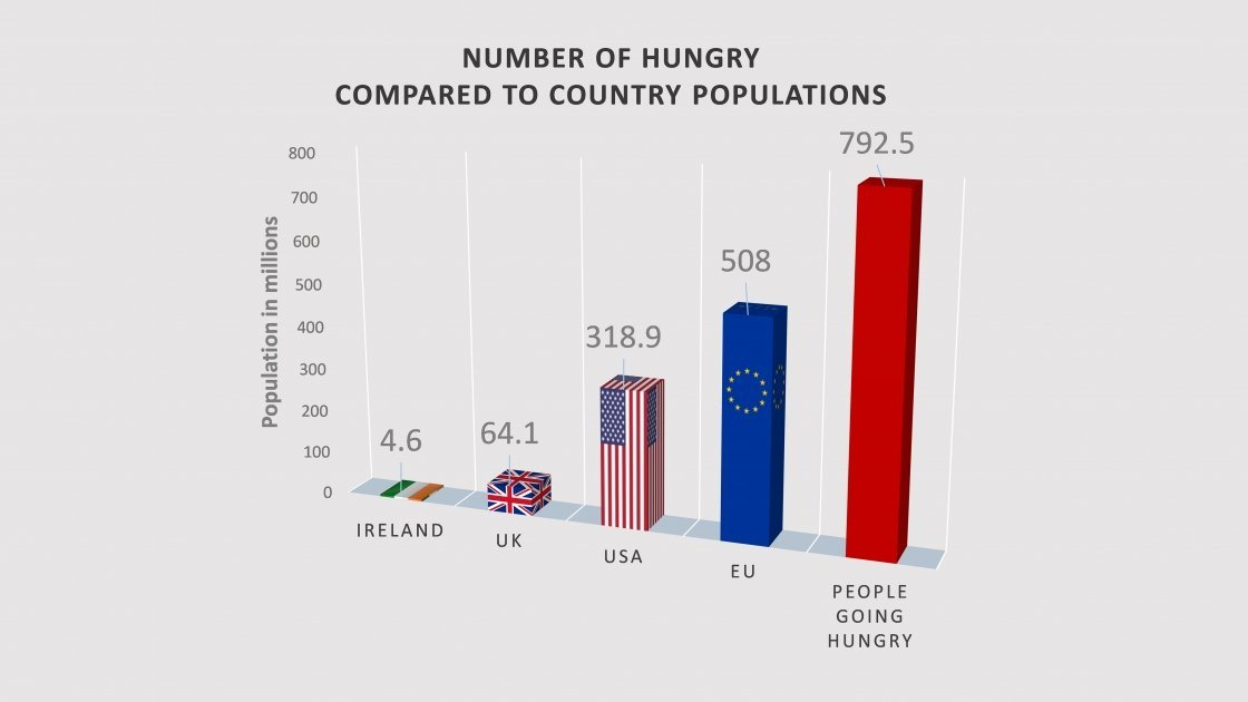 792.5 million people went hungry in the world in 2015. Graphic: Concern Worldwide.