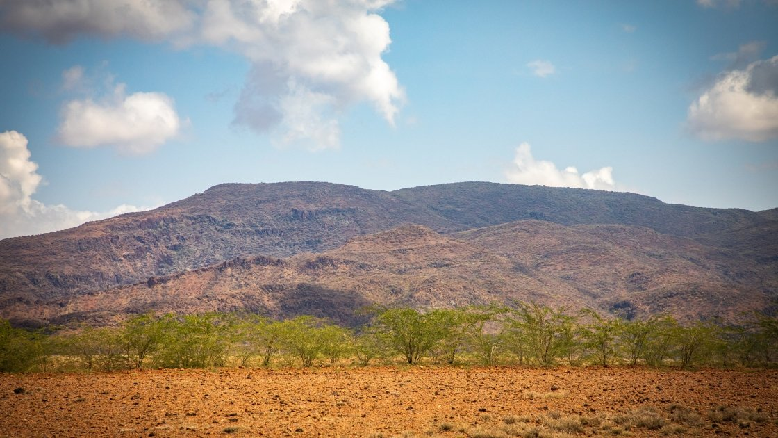 Drought in Turkana county is drying up pastures for livestock to graze on. Photo: Gavin Douglas / Concern Worldwide.