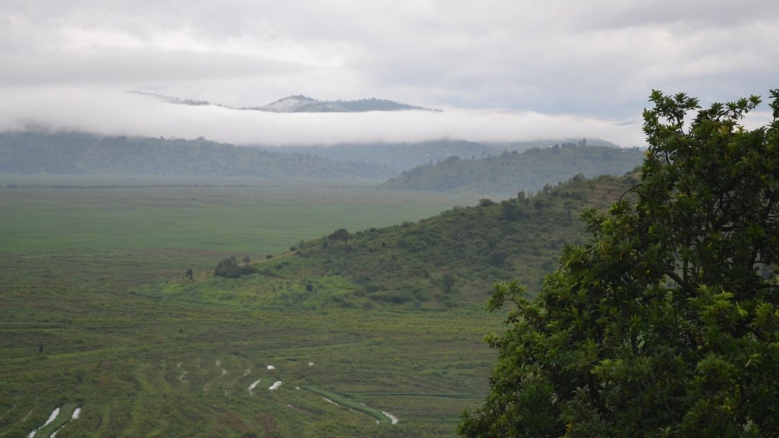 A photo of the hilly Rwanda landscape