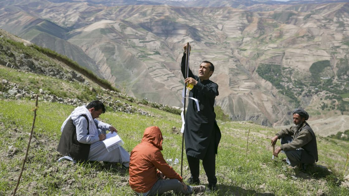 Setting measuring stakes on a hillside as part of a Concern watershed management project in Afghanistan. Photo: Kieran McConville / Concern Worldwide