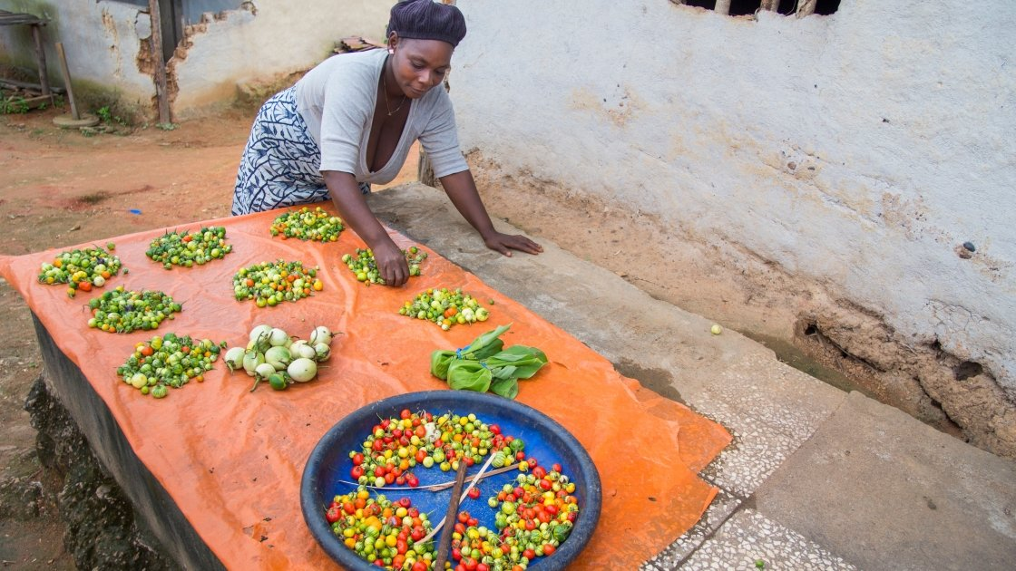 Kebah Bemah participates in one of Concern's farmer field schools in Lofa County, Liberia. She is pictured here with some of her Beetaball harvest. Photograph taken by Kieran McConville/Concern Worldwide.