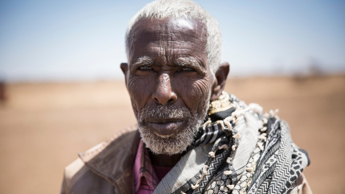 Muhumad Abdilahi from Somaliland brought his flock of 200 sheep and goats over 600km to Ilkaweyne, in an effort to save them. More than half have died in the past two months. Photo: Kieran McConville/Concern Worldwide.