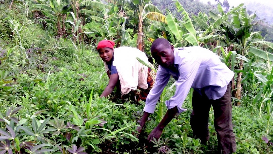 Buuma Maene and his sister working in his field which was planted using seeds provided by Concern. Photo: Ulua Popol/Concern Worldwide.