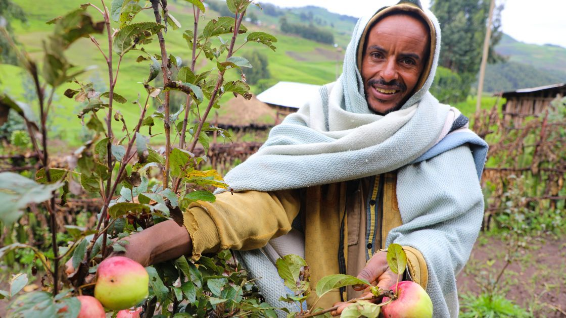 Ahimed Ali Mahamed now has apple trees – and the skills to tend to them – thanks to the generosity of people like you. Photo: Jennifer Nolan, Ethiopia, 2017.