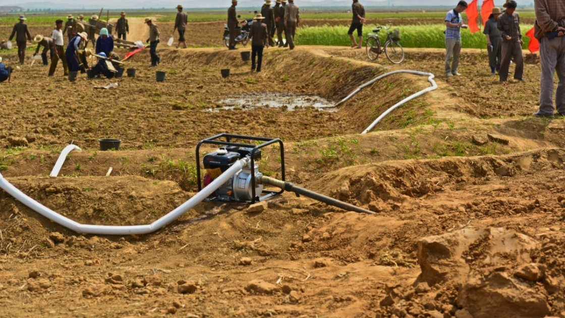 Local farmers watering and planting rice in fields in Unpa county, DPRK. Photo taken by Noel Moloney.