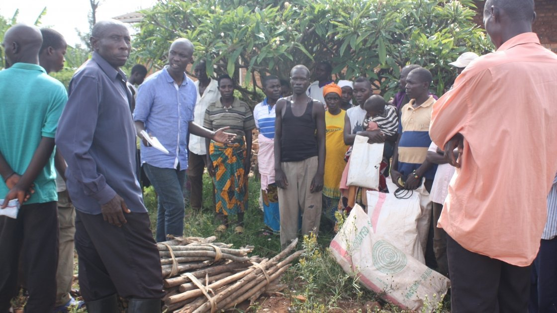 A group of beneficiaries' awaiting the distribution of stake at Murore site in Burundi. Photo: Concern Worldwide.