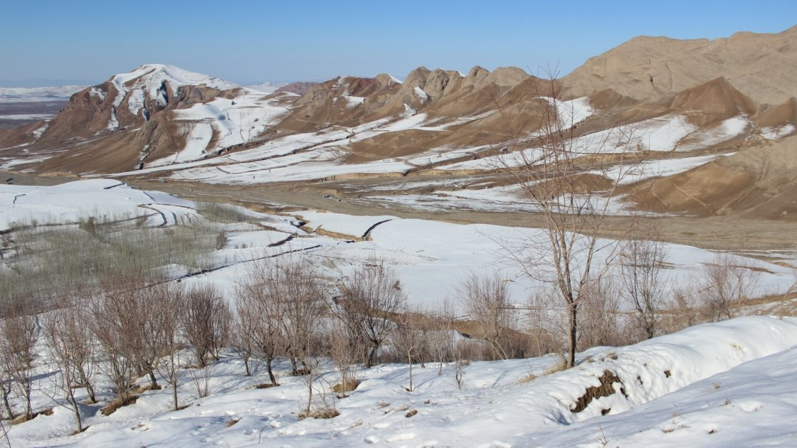 Orchard of Kozur community forest during winter in Afghanistan. Photo: Concern Worldwide.