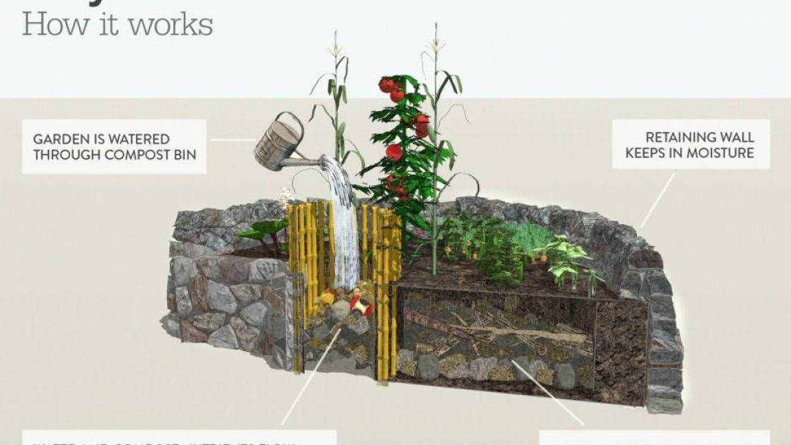 How a keyhole garden works. Photo: Aeri Wittenbourgh/Concern Worldwide.