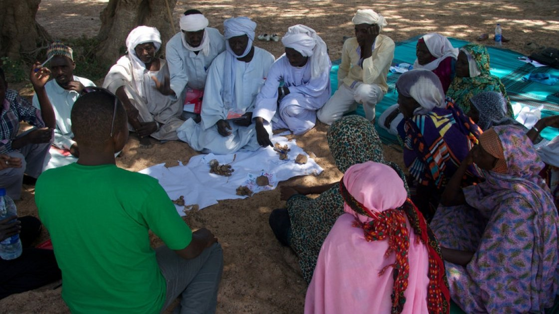 A community group discuss the results of the vote on impact and frequency of hazards in order to prioritise the most important ones in Tcharow, Chad. Photograph taken by Dom Hunt/Concern Worldwide.