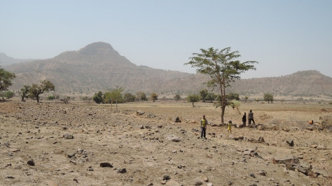 Children walk over agricultural land in Tselmti woreda in Ethiopia where nothing is growing due to drought. Photo: David Hunn / Concern Worldwide / Feb 2016.