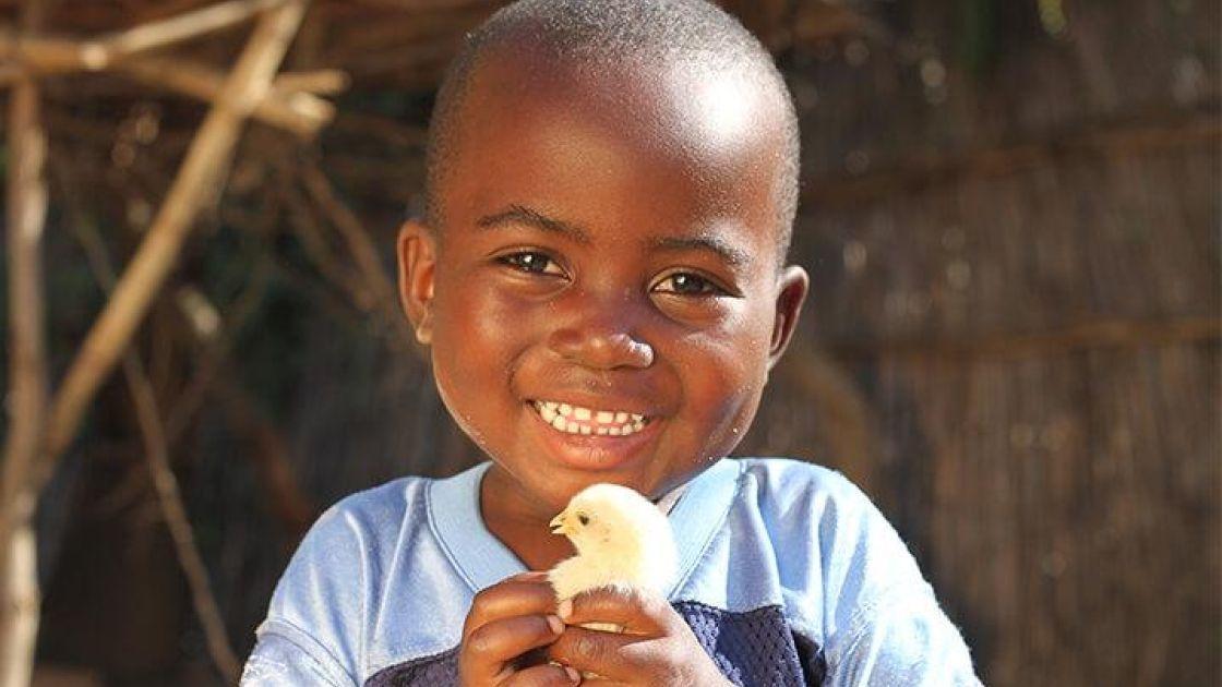 Donnex Jordan holds a baby chick. Jennifer Nolan/Concern Worldwide, Malawi, 2016.