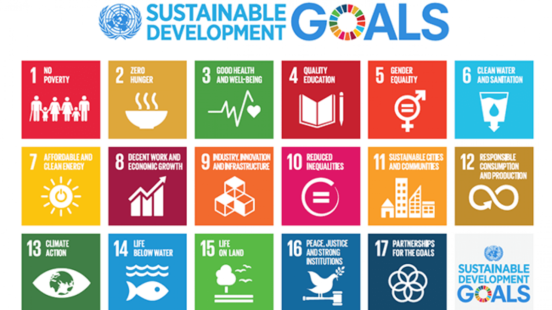 The 17 Sustainable Development Goals for 2030.