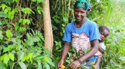 Kadiatu Bangura (35) with son Sheku Conteh (1) picking 'Makrun' - orange wild fruits in the local forest. Photo: Jennifer Nolan / Concern Worldwide.