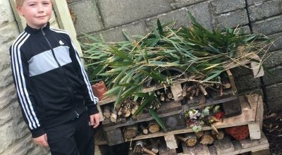 Sam Murphy (9) from Cobh Cork who built an insect hotel as part of Concern Worldwide's new home-schooling 17  Days to Learn challenge. Photo: Concern WOrldwide.