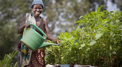 Euphemia Inina (42) mother of Alphonsine Niyonzima (21) waters their market garden at her home in Mabayi, Cibitoke. As part of the Graduation programme all participants are given seeds and training on how to grow food in their gardens. Photo: Abbie Trayler-Smith / Concern Worldwide.