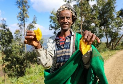 Assen Shek Oumed from Ethiopia has benefitted from training in livelihood activities such as bee-keeping. Photo: Jennifer Nolan / Concern Worldwide.
